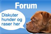 Forum om hunder og raser