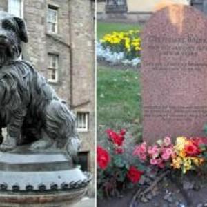Hund voktet eierens grav i 14 år